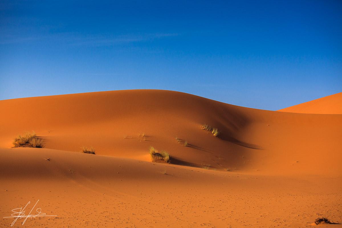 Sahara_desert_dune
