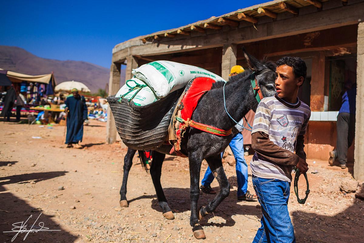 Morocco_reportage