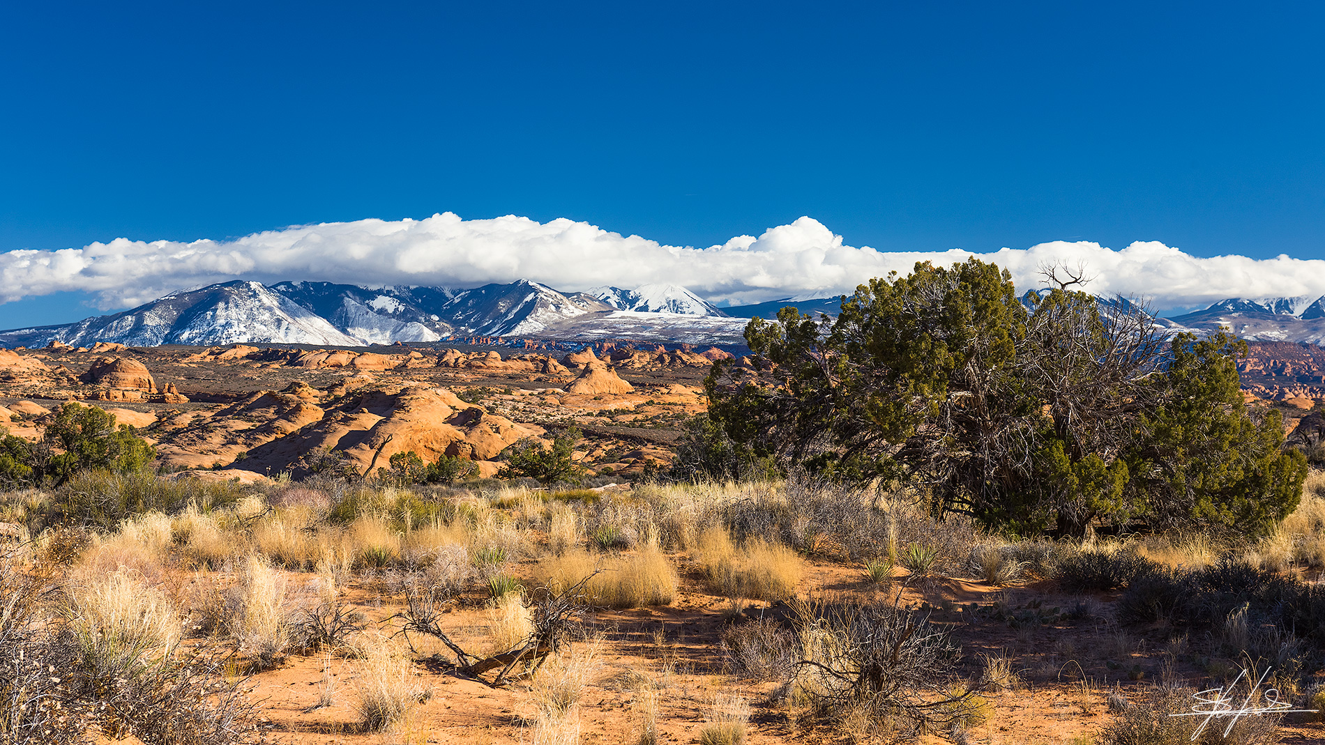 Desert & Snow