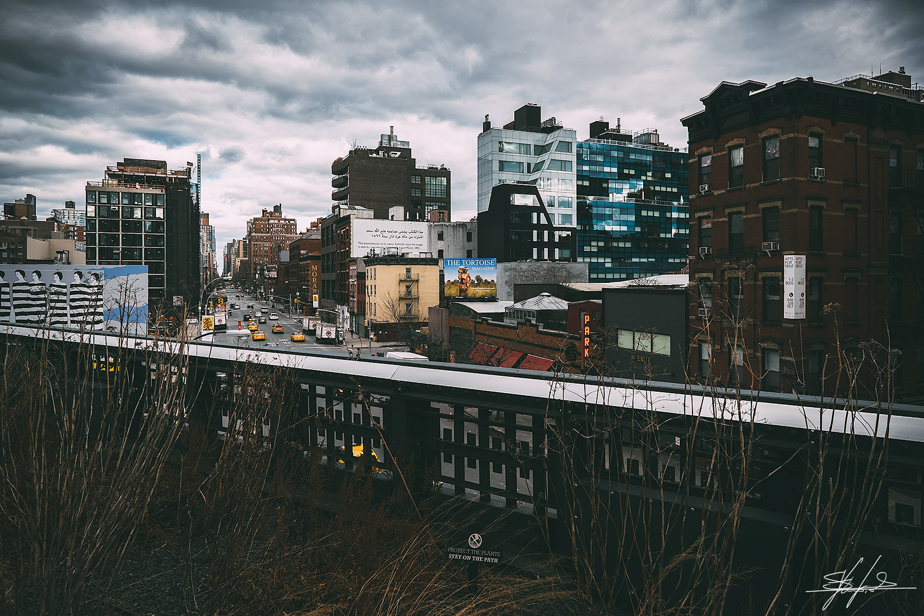 View from the Highline - Manhattan