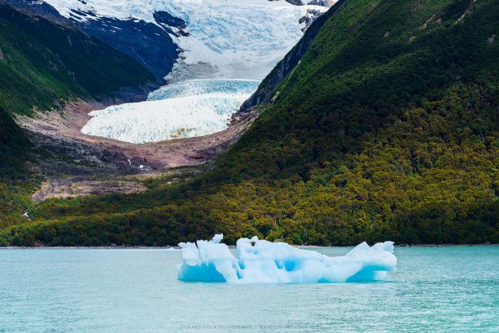Glaciers and forests - Los Glaciares