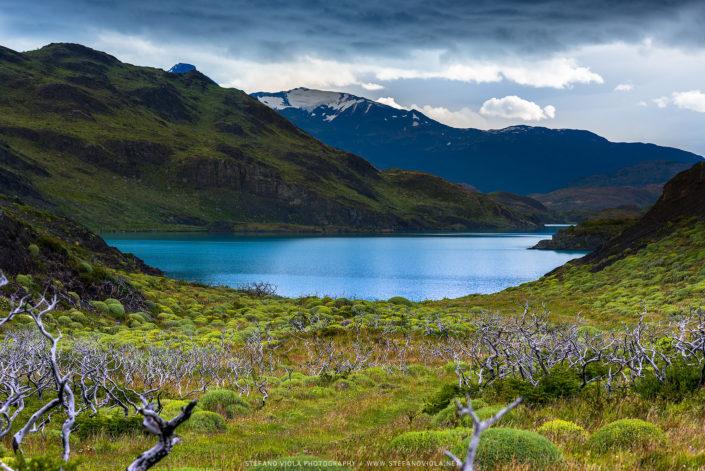 Nature's perfection - Torres del Paine