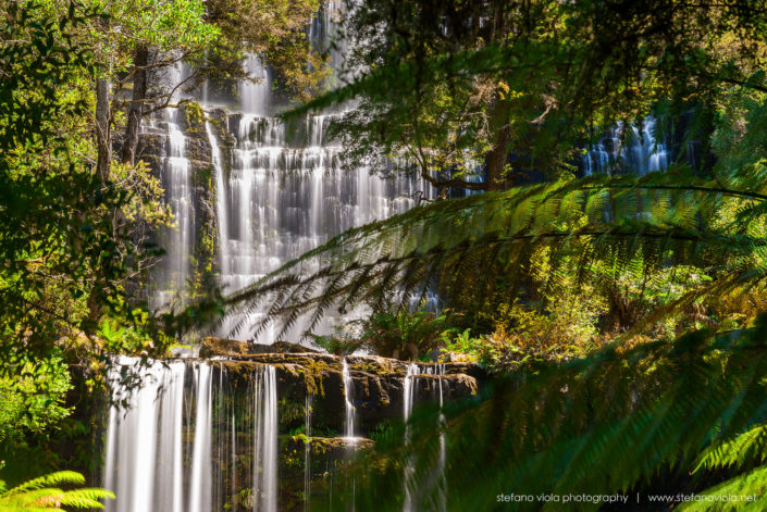 The Russell Falls in Mt Field National Park - Tasmania